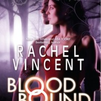 Book Bits: Clockwork Prince, Rachel Vincent, new books from favorite authors, &#8216;American Talk&#8217; and Contest Roundup